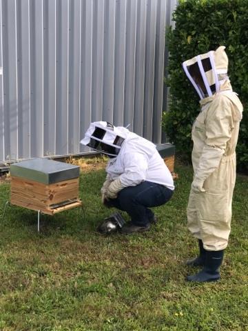 Ruche_avec_l'apicultrice_de_l'entreprise